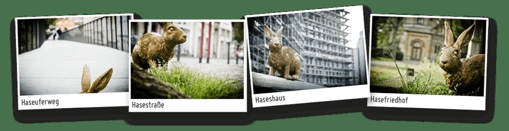 HASEGOLD in Osnabrück