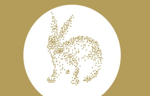 Grafikdesign Osnabrück Hasegold