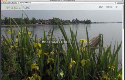 Neue Website von Appelbaum in Osnabrück von Wordpress