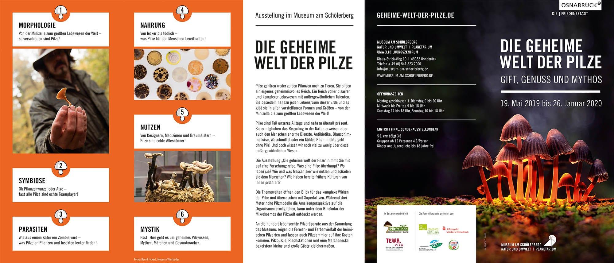 Pilzausstellung 2