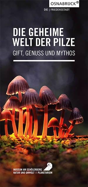 Pilzausstellung 1