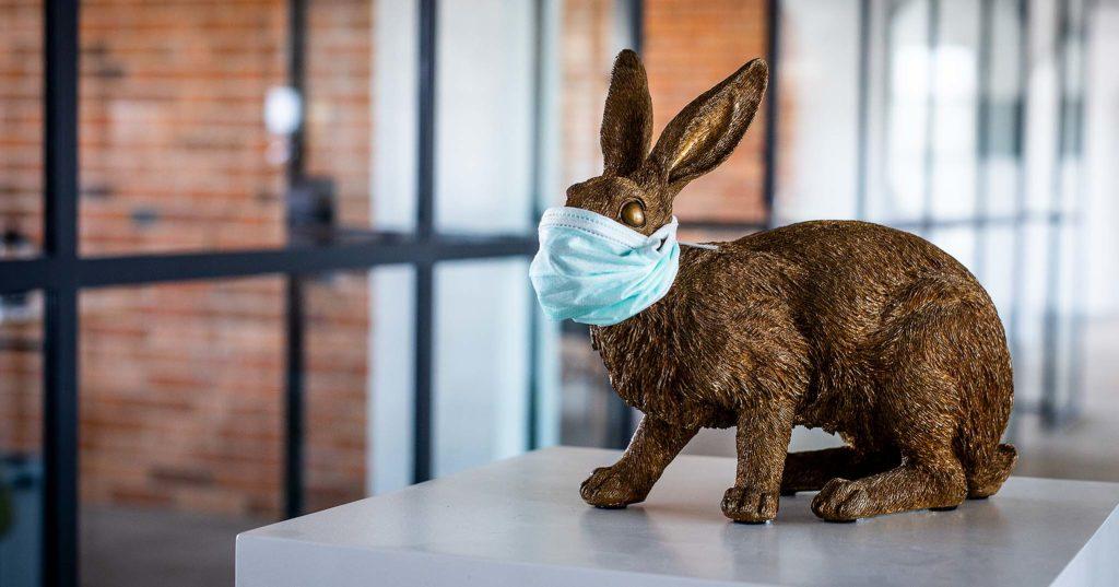 Osterhase mit Mundschutz oder Schutzmaske: Die Werbeagentur Hasegold aus Osnabrück zu Corona-Zeiten: Aus wir schützen mit Mundschutz unseren golden Hasen.